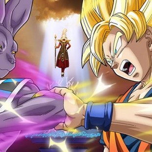 Dragon Ball Z : Battle for Gods