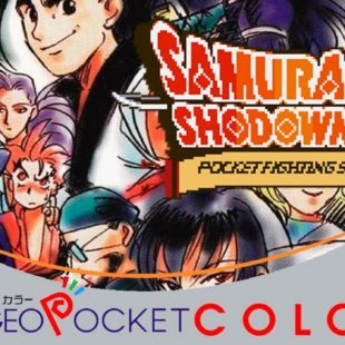 Samurai Spirits! 2 Pocket Fighting Series