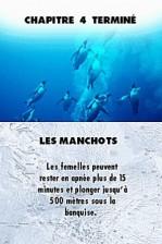 la_marche_de_lempereur_DS_002
